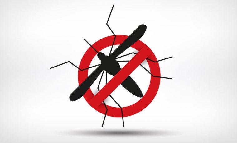 Relatório de ações de combate à dengue